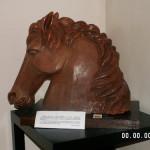 dominici-laura016